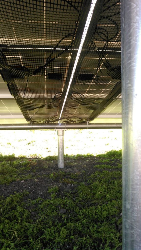 solar ground mount with protective cover by Solarponics