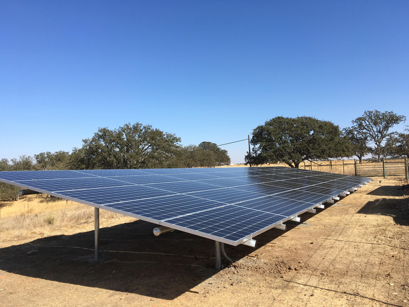 A Solarponics solar ground mount in Paso Robles